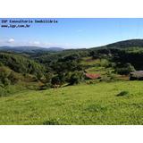 Fazenda Porteira No Asfalto. Em Bofete - Sp - Fa00001 - 2819120