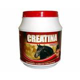 Creatina Para Cavalos Vetbrás 500g Suplemento Vitamínico