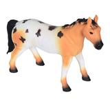 Cavalo Appaloosa - Dtc