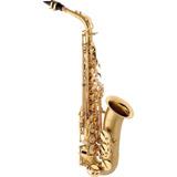 Saxofone Alto Eagle Sa500 Em Mib (eb) Com Case Laq. Escovado