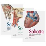 Atlas De Anatomia Humana 3 Vols - Sobotta - Guanabara