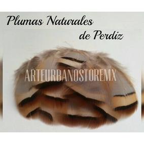 Plumas Naturales Y Exóticas De Perdiz En $100 Con 40 Plumas