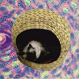 Casa Para Perro O Gato De Tule
