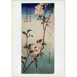 Lienzo Tela Escuela Utagawa Pájaro Rama Flores Japón 71x50cm