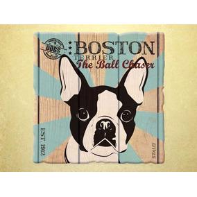 lindos filhotes de boston terrier!!! Carregando zoom.