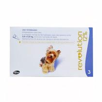 Antipulgas E Carrapatos Revolution Para Cães De 2,5 A 5kg
