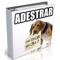Kit De 5 Ebook Adestramento De Cães Adultos Filhoes