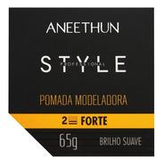 Aneethun Pomada Modeladora Style Brilho Suave 65g Fixação Fo