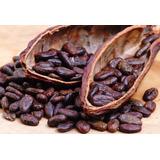 1 Kgsemilla De Cacao Tostado Y Pelado -chiapas