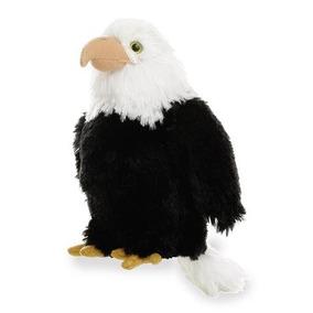 Águila Calva Miyoni Aurora. Para Esas Ocasiones Especiales