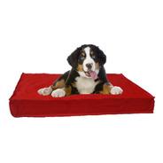 Funda Lisa Antidesgarro 90x60 Perros Mascotas Sin Relleno