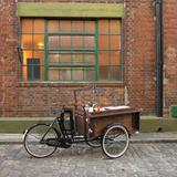Bicicleta Food Bike Triciclo Tres Ruedas Food Truck Carrito