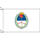 Bandera De Jujuy Y Libertad Civil 90 X 150cm Oficial