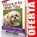 Guía De Entrenamiento Para Perro Shih Tzu 3
