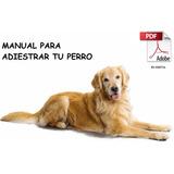 Manual De Adiestramiento Básico Canino + Envió Gratis