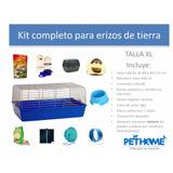 Kit Completo Talla Xl Para Erizos De Tierra Pethome Chile