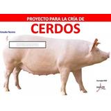 Proyecto Cría De Cerdos, Instalaciones, Cuidados, Todo