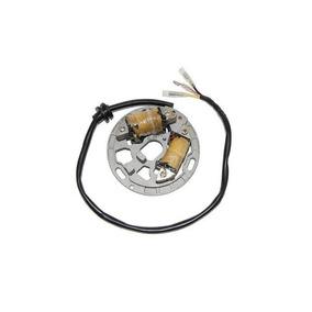 Estator De Iluminación Electrosport Esl225 Kawasaki Kdx200