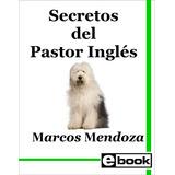 Pastor Ingles Libro Adiestramiento Cachorro Adulto Crianza