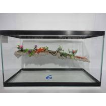 Aquario Terrario Para Tartaruga Nº 6