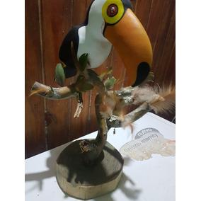 Artesanía Wichi Tucan