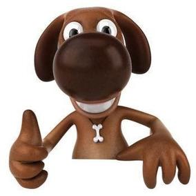 Dog Walker Passeador De Cães Centro Sp E Regiões