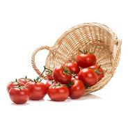 Sementes De Tomate Heinz - O Tomate Mais Famoso Do Mundo!