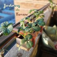 Jardinera De Terraza