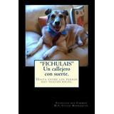 Fichulais, Un Callejero Con Suerte. : Hasta Entre Los Perros