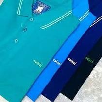 Camisa Camiseta Polo Colcci Original Masculina Lançamento