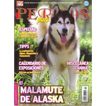 Revista Alaska Malamute Diciembre 2006 Envio Gratis Por Dhl