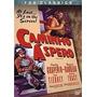Dvd Caminho Áspero - Tabacco Road- John Ford 1941