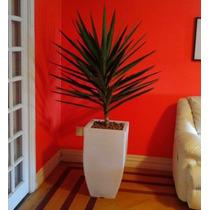 1 Vaso Planta Trapesio Quadrado Texturizado Pet T 75x40 Cm