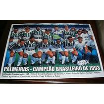 Poster Do Palmeiras - Campeão Brasileiro 93