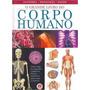 Livro - O Grande Livro Do Corpo Humano - Ciranda Cultural