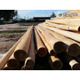 Poste De Eucaliptus Impregnado Diametro 15 A 16 Cm X 5 Mts