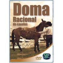 Dvd Video Aula Doma Racional De Cavalos