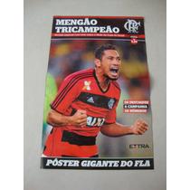 Revista Poster Flamengo Tricampeão Copa Do Brasil 2013