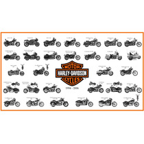 Cuadro Harley Davidson Motorcycles 1994 - 2006