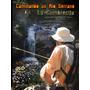 Video De Pesca En Cordoba - Pesca De Truchas