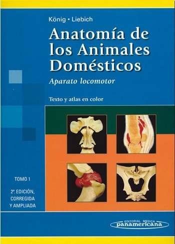 koning anatomia de los animales domesticos tomo 2