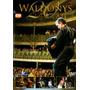 Dvd Waldonys 20 Anos De Carreira Original