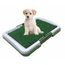 Sanitario Higienico Canino Caes Cachorro Bandeja Lavavel