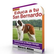 Como Educar A Un San Bernardo - Guía De Adiestramiento Raza