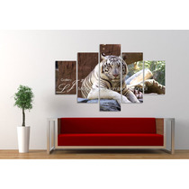 Cuadros Tigre Leopardo León Jaguar Animales Salvajes Felinos