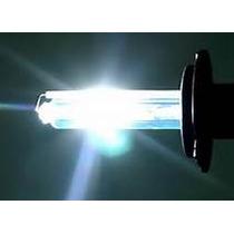 Lampara Xenon Hid 6000k 8000k H1 H3 H7 H11 H16 9005 Etc