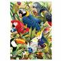 Quebra Cabeça Puzzle Série Especial Aves 1000 Peças - Grow