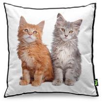 Almofada Yaay Love Cats Black Edition - Maine Coon
