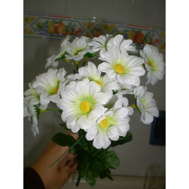 Flores Gervera, Rosas, Anturios,alcatraces Maa