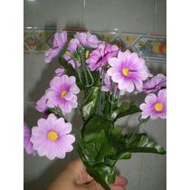 Flores Geranios, Alcatraces, Rosas, Girasoles Vbf